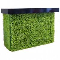 Bar - GRASS